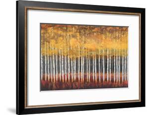 Golden Aspens by Robert Holman