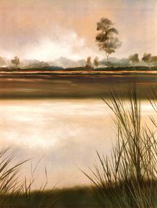 Grassland by Robert Holman