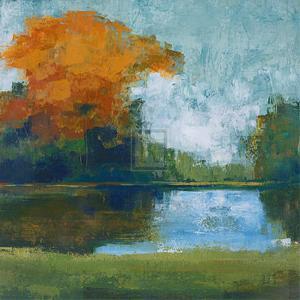 Sycamore Glen by Robert Holman