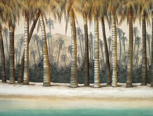 Tourmaline Coast by Robert Holman