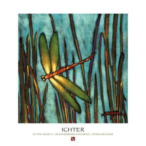 As You Wish II by Robert Ichter
