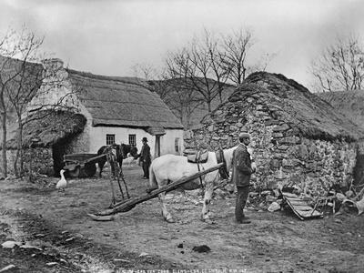 Farmyard Scene, Glenshesk, County Antrim, Ireland, C.1895
