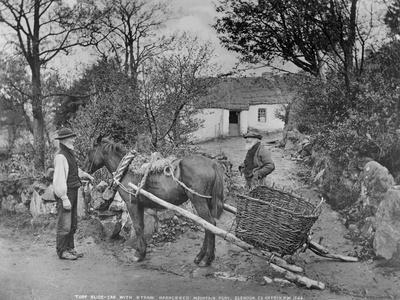 Slide Car with Straw-Harnessed Mountain Pony, Glendun, County Antrim, C.1895