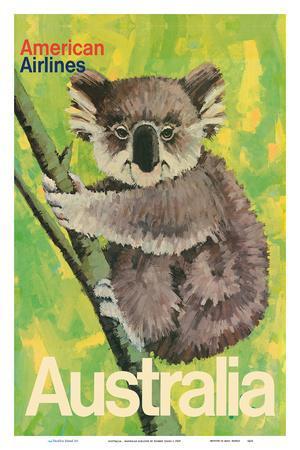 Australia - Koala Bear In Tree - American Airlines