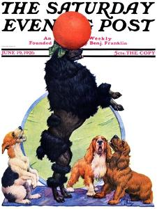 """""""Poodle Tricks,"""" Saturday Evening Post Cover, June 19, 1926 by Robert L. Dickey"""