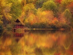 Wooden Cabin on Lake in Autumn by Robert Llewellyn