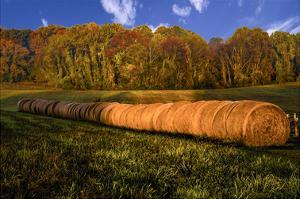 Hay Bales by Robert Lott