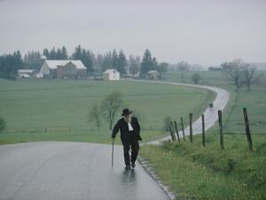 An 81 Year Old Amish Man Walks to the Amish Church on Sunday Morning by Robert Madden