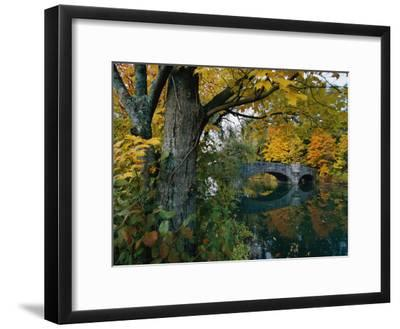 Autumnal View of a Stone Bridge