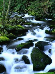 River Cascading Down Moss-Covered Rocks by Robert Marien