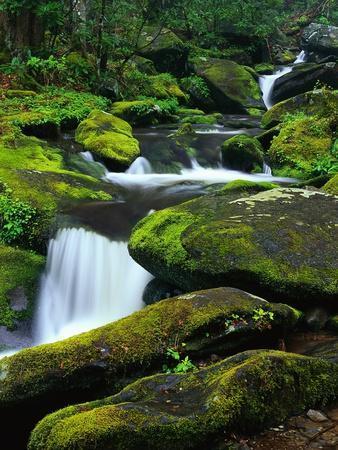 Stream Cascading Down Moss-Covered Rocks