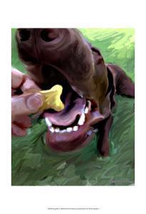 Dog Bite by Robert Mcclintock