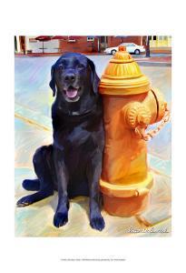 Lab's Best Friend by Robert Mcclintock