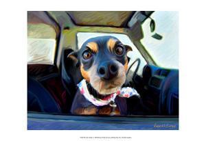 Little Dobie by Robert Mcclintock