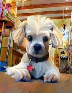 Mazel Dog by Robert Mcclintock