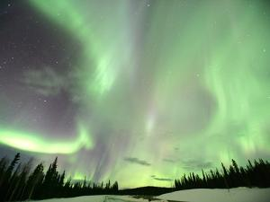 Aurora Borealis or Northern Lights, Yukon. by Robert Postma