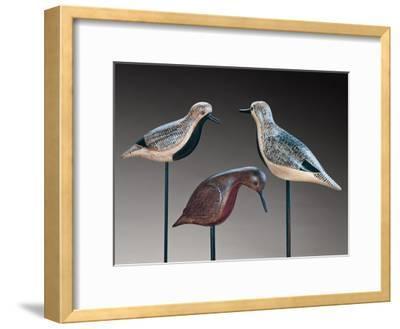 Verity Shorebirds Trio
