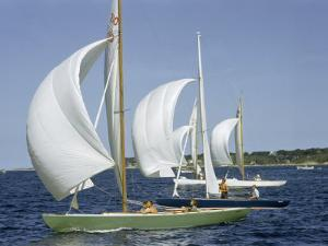Sailboats Cross a Race Course Starting Line with Wind-Filled Sails by Robert Sisson