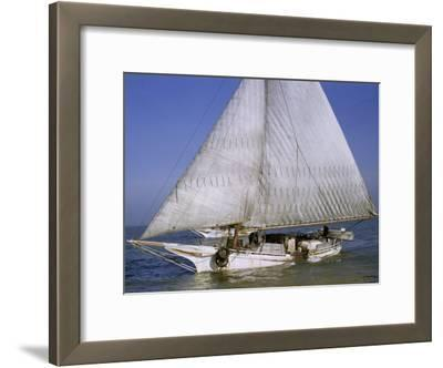 Skipjack for Oyster Fishing Sails on Choptank River