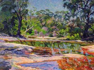 Wirreanda Creek, New South Wales, Australia by Robert Tyndall
