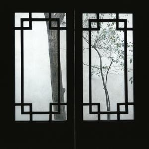 Trees Seen Through House Windows in Pingyao by Robert van der Hilst