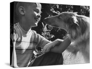 Boy with His Pet Collie by Robert W. Kelley
