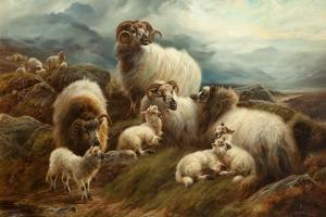 Sheep in a Landscape, 1894 by Robert Watson