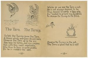 The Tern. The Turnip. by Robert Williams Wood