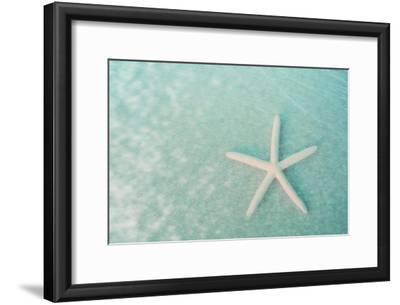 Starfish II