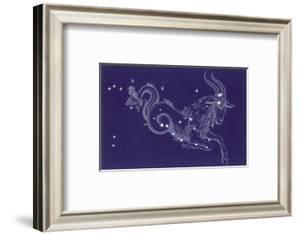 Capricorn by Roberta Norton