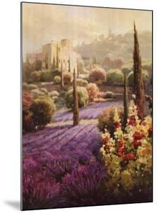 Fields of Lavender by Roberto Lombardi
