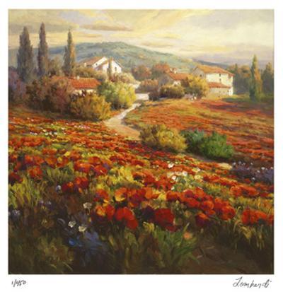 Poppy Fields by Roberto Lombardi