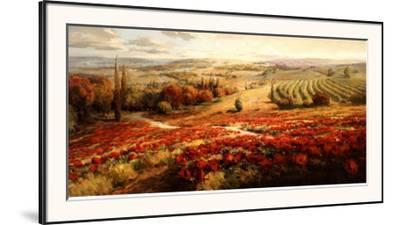 Red Poppy Panorama