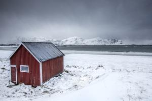 A Typical House of the Fishermen Called Rorbu on the Snowy Beach Framed the Icy Sea, Norway by Roberto Moiola