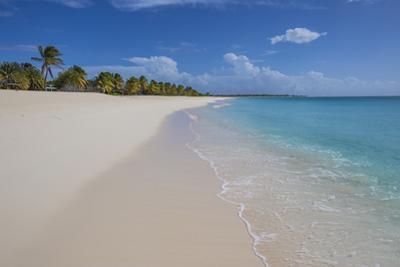 Barbuda, Antigua and Barbuda, Leeward Islands, West Indies by Roberto Moiola