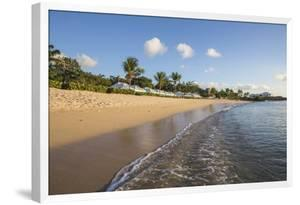 Blue Sky and Palm Trees Frame the Beach and the Caribbean Sea, Hawksbill Bay, Antigua by Roberto Moiola