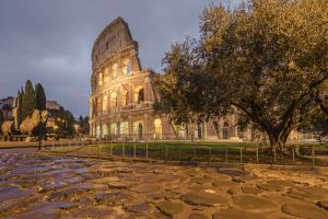 Dusk lights on the Colosseum, the old Flavian Amphitheatre, and symbol of the city, UNESCO World He by Roberto Moiola