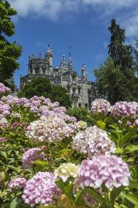 Flowers Frame Old Mystical Buildings of Romanesque Gothic and Renaissance Style by Roberto Moiola