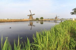 Green Grass Frames the Windmills Reflected in the Canal, Netherlands by Roberto Moiola