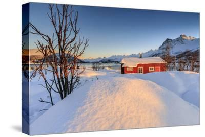 The Winter Sun Illuminates a Typical Norwegian Red House Surrounded by Fresh Snow