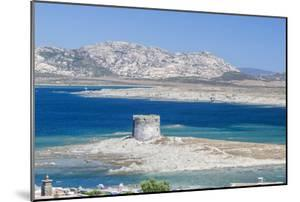 Turquoise sea and old tower surround La Pelosa Beach, Stintino, Asinara Nat'l Park, Sardinia, Italy by Roberto Moiola
