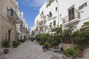 Typical alley and houses of the old town, Polignano a Mare, Province of Bari, Apulia, Italy, Europe by Roberto Moiola