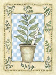 Sage by Robin Betterley