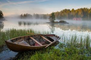 A Beautiful Morning at the Lake by Robin Eriksson