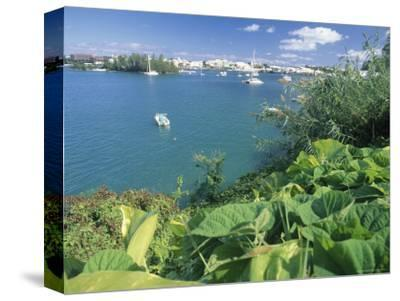 Hamilton Harbor with Greenery