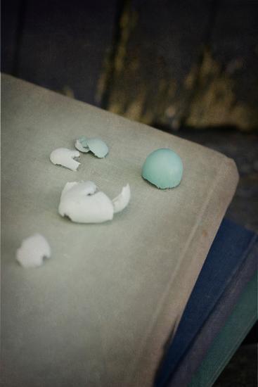 Robin's Eggs and Reading-Elizabeth Urqhurt-Photographic Print