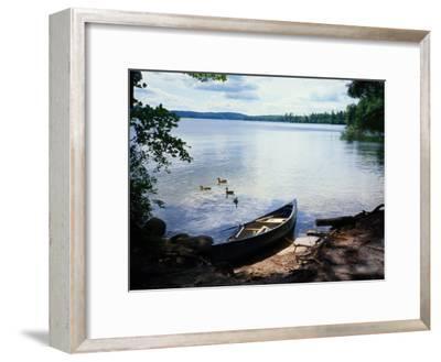 Scene with Ducks and Canoe on Lake Kezar
