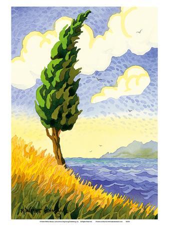 Lone Cypress and Sea - Tuscany Italy