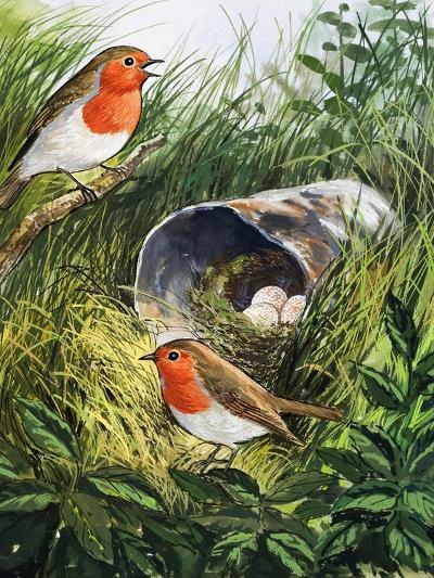 Robins-English School-Giclee Print