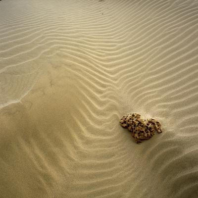 Rock Eroding in Desert Sand-Micha Pawlitzki-Photographic Print